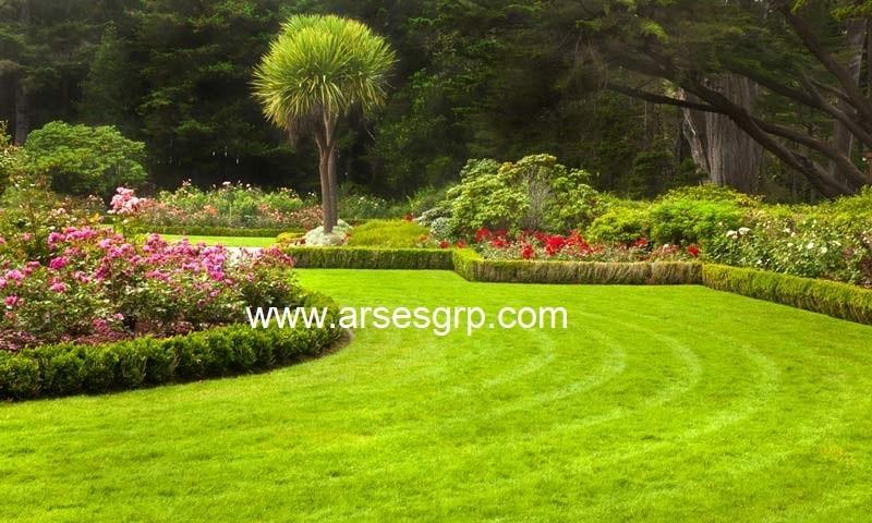 هزینه محوطه سازی باغ