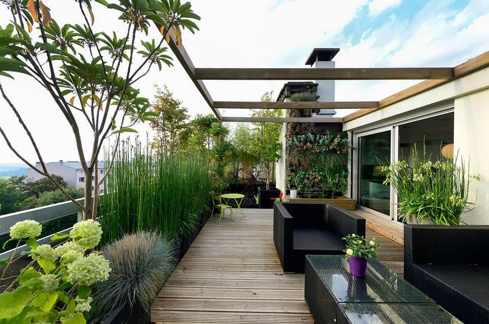 محوطه سازی باغ پشت بام