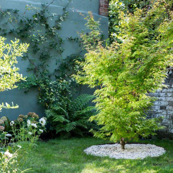 محوطه سازی باغ مدرن