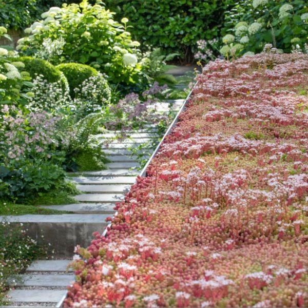 محوطه سازی باغ ویلا ب گل