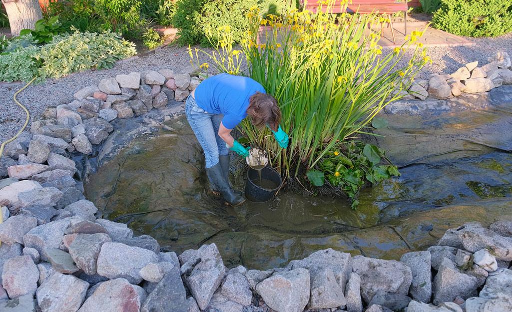 چگونه حوضچه خود را حفظ کنیم